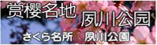 さくら名所夙川公園